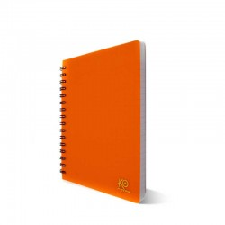 Cahier Wiro Petit Format-300 pages