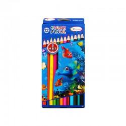 Crayon couleur saed